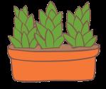 illustration de plantes