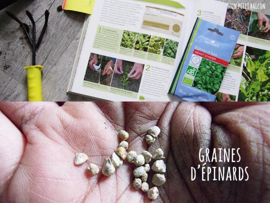 cagette_legumes_feuilles_19