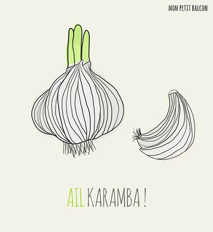 Plante 5 ail karamba mon petit balcon - Semer de l ail ...